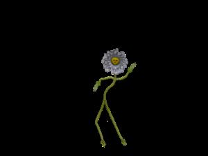flower-1184450_1920